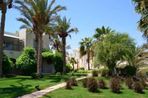 погода в египте в марте: в хургаде, в шарм